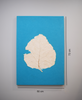 Turquoise wall poster with teak leaf imprint with measurements