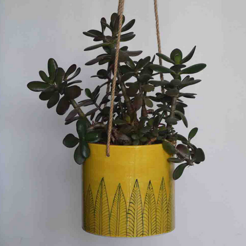 Pattee, yellow hanging planter with black leaf pattern -with a plant