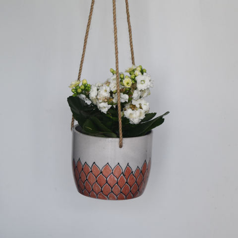 Phool, terracotta and white floral patterned hanging planter- with plant