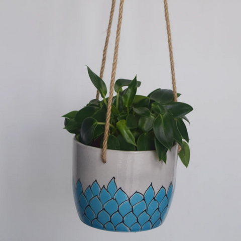 Phool, turquoise and white floral patterned hanging planter- with plant