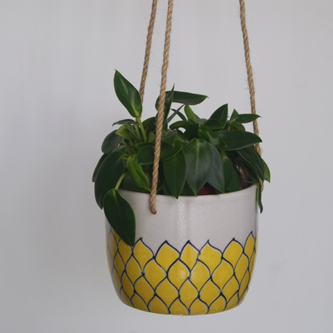 Phool, yellow and white floral patterned hanging planter- with plant