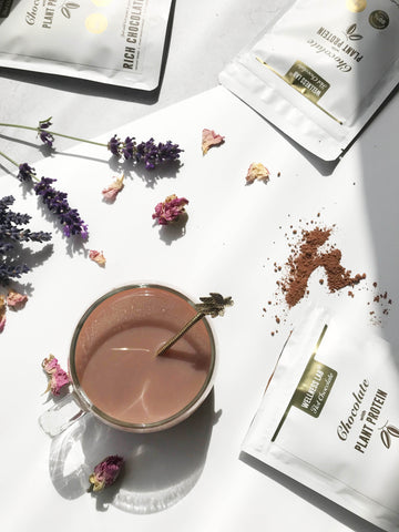 vegan hot chocolate wellness lab