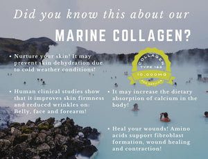 Marine Collagen Powder | Type 1&3 - Wellness Lab Ltd