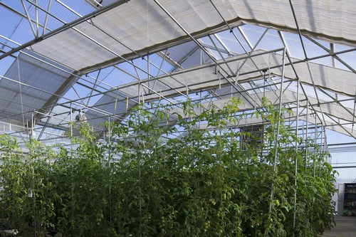 Greenhouse Shading System