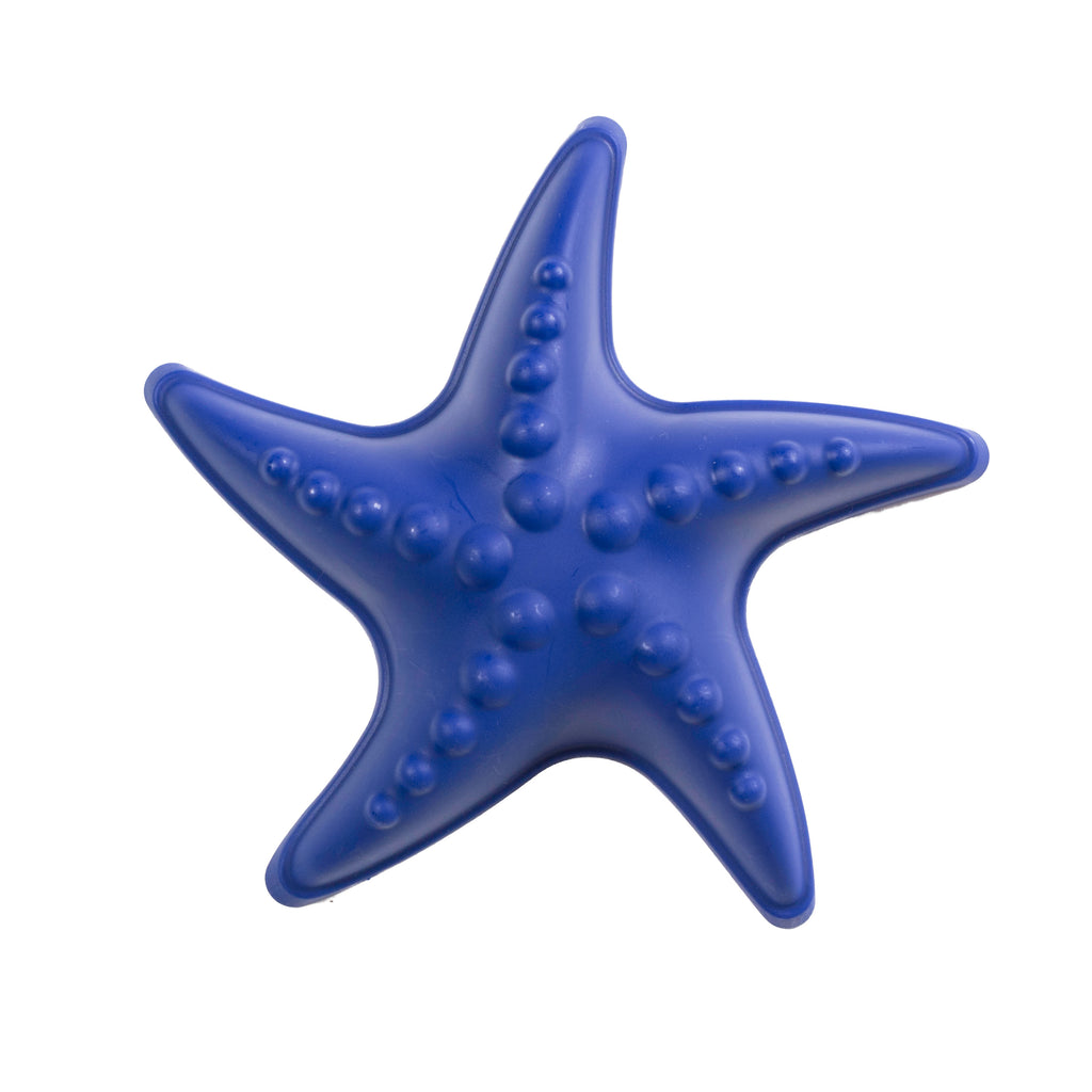 Starfish Mold Sand Toy