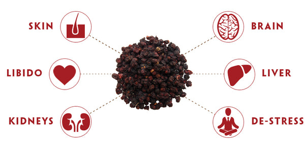 Teelixir Schizandra berry Health Benefits