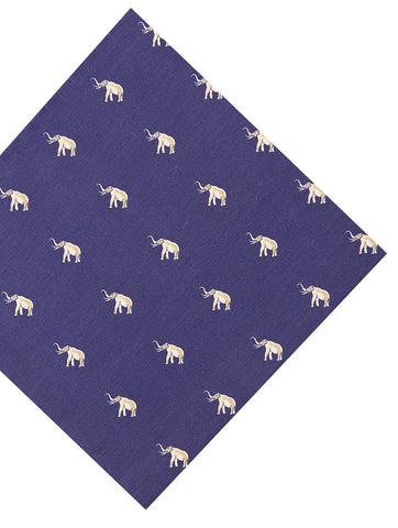 DÉCLIC Lateralis Hanky - Assorted