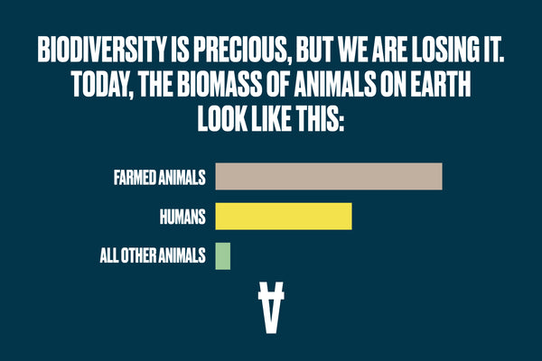A horizontal bar chart shows that farmed animals are in far greater number on the plant than humans or all other animals.