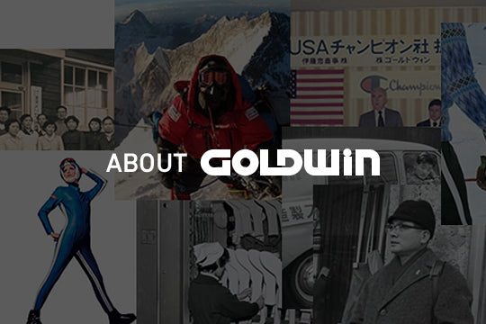 ABOUT GOLDWIN