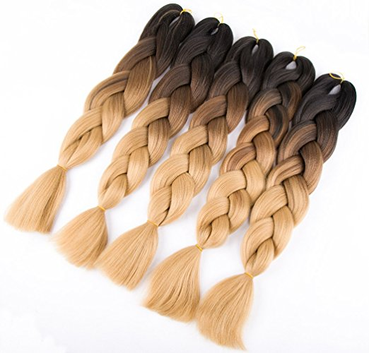 Ombre Braiding Hair Extensions 24