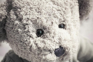 45/55cm Cute new style gray bear plush toys lovers bear doll stuffed animals pillow baby cushion birthday gift Toys > Plush Toys > Animal Plush Toys > Bear Plush Toys - KidNappy
