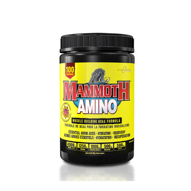 Mammoth Amino, 100 servings