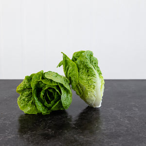 Lettuce Baby Cos Twin Pack