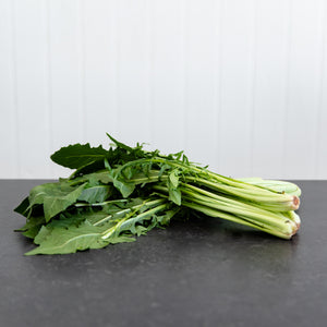 Chicory (Bunch)