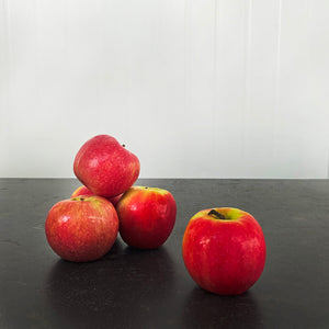 Apple Pink Lady Large (Each)
