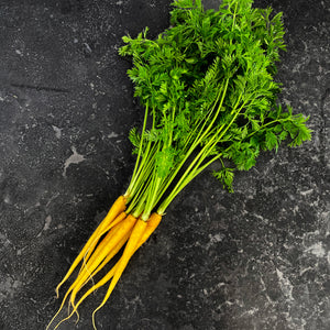 Carrot Dutch White (Bunch)