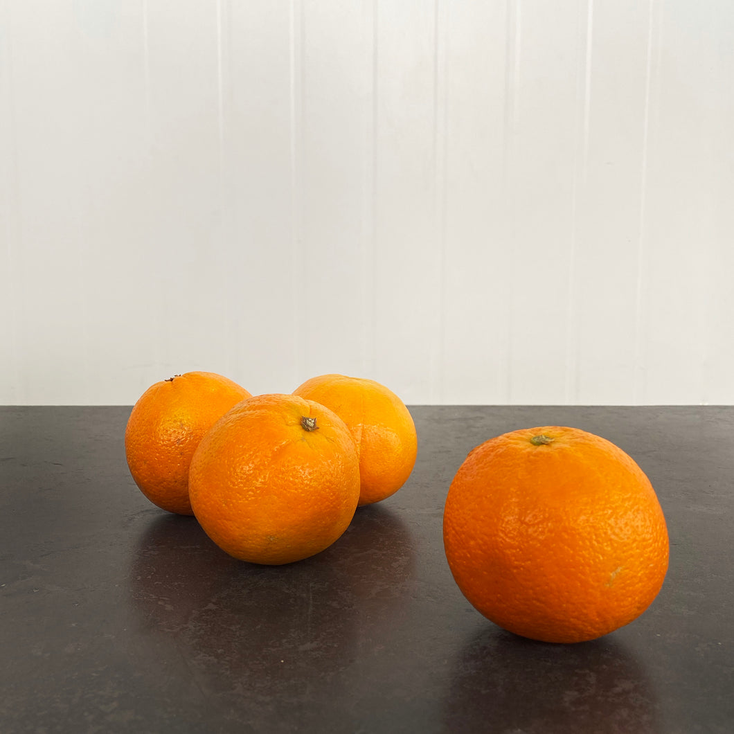 Orange Navel (Each)