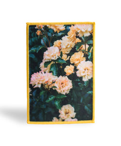 Yellow Rose Bush - Photo Patch