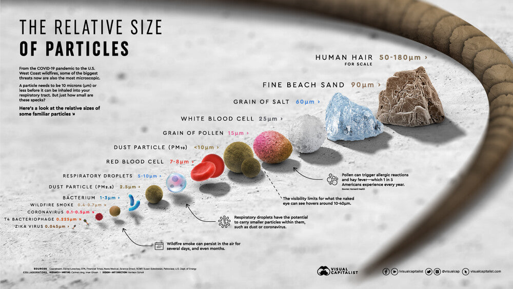 Different Sizes of Particles