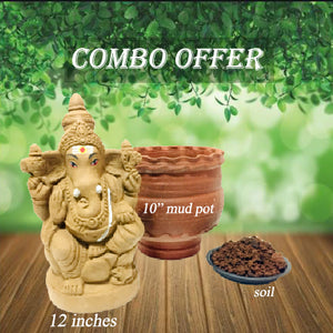 seed ganesha como offer