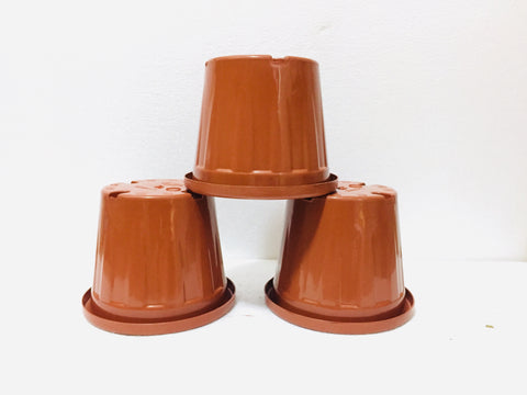 sheera 8 inch terracotta plastic pot