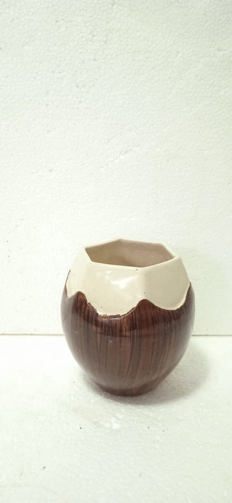 Coconut planter ceramic