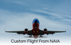 Custom Flight From NAIA (4pax or more)