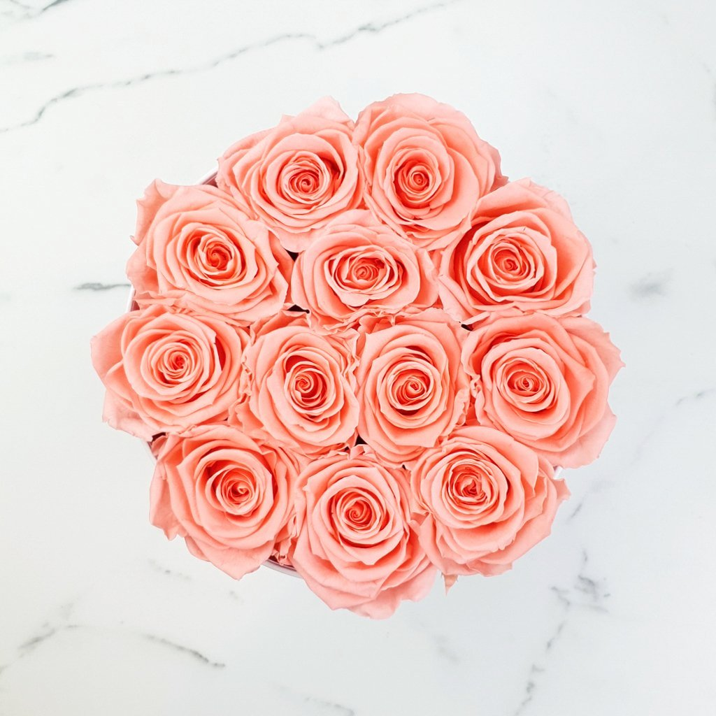 orange rose, peach rose, rose box, preserved roses, long lasting roses, luxury roses sydney, forever roses