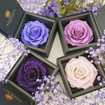 rose box sydney, flower box sydney, long lasting rose, preserved rose, preserved flower, birthday rose, purple rose, diamond rose, wedding gift