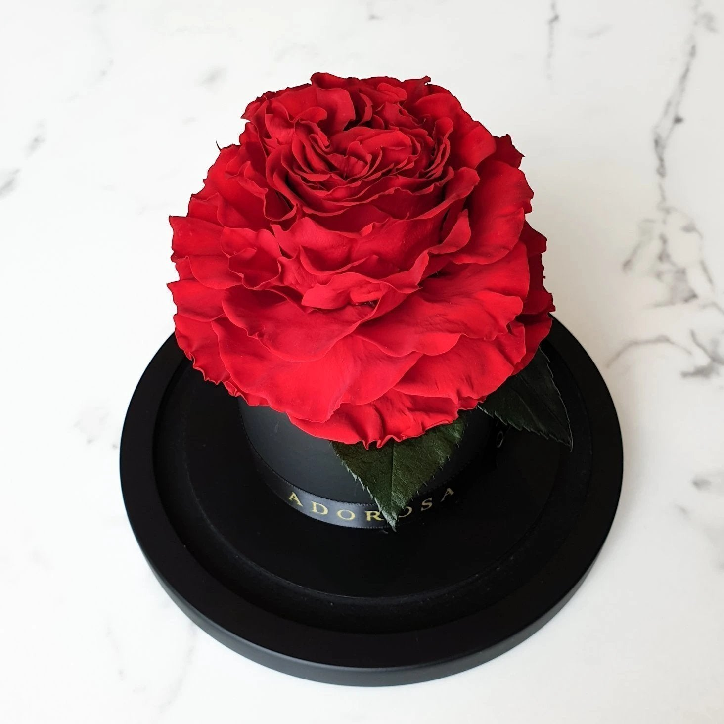 glass dome rose, long lasting rose, luxury rose sydney, rose delivery sydney