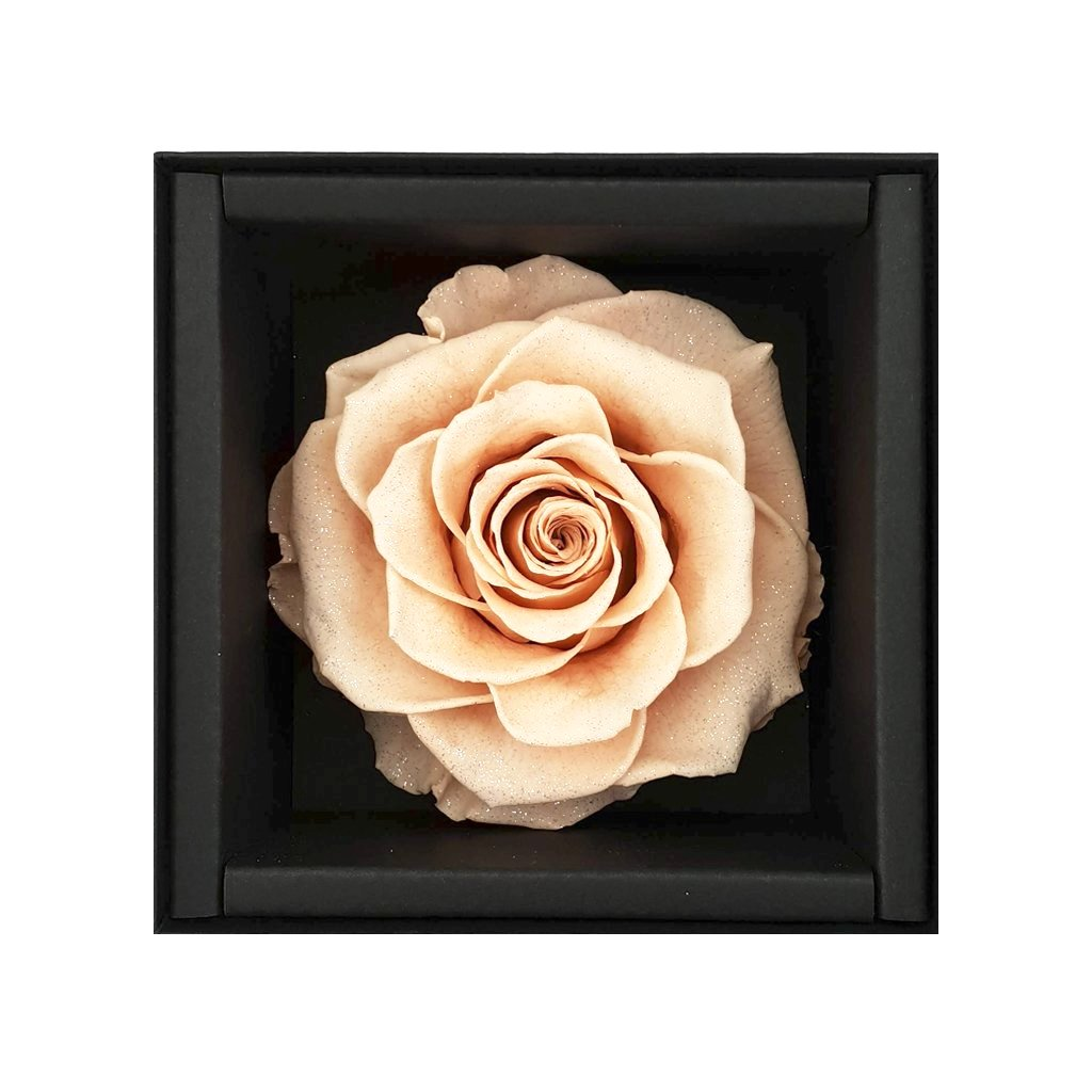 rose, rose box, rose box sydney, flower, flower box, flower box sydney, sydney flower delivery, eternity rose, long lasting rose, preserved rose, preserved flower, heart box, babys breath