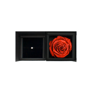 preserved rose, preserved flower, rose box, flower box, rose box sydney, flower box sydney, red rose, propose ring, diamond ring box, ring box