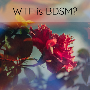 The Lowdown: WTF is BDSM?
