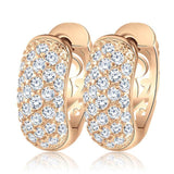 Luxury Clear CZ Earrings 1386