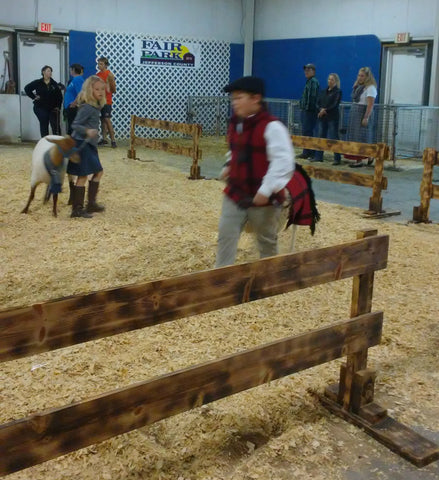 Event Recap: Wisconsin Sheep and Wool Festival - Crafty