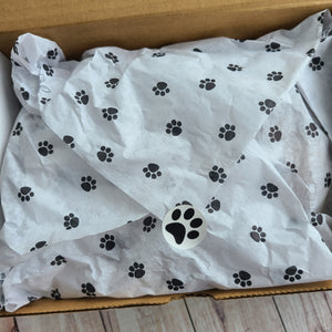 Pawsome Mystery Box - Limited Edition