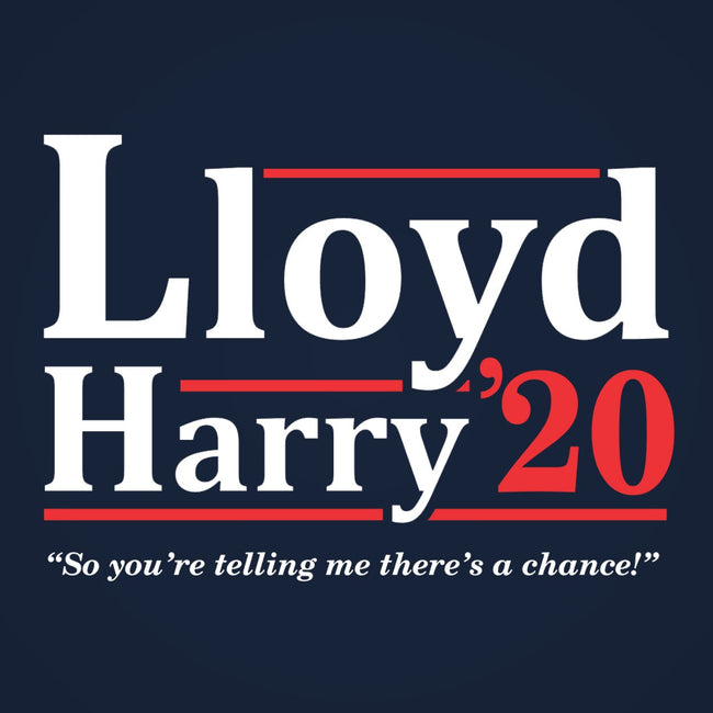 Lloyd and Harry 2020 Election