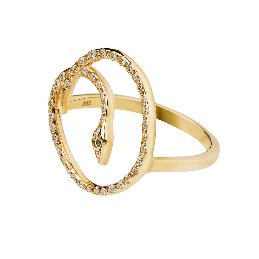 Lucky Snake Ring Y-D-Ts