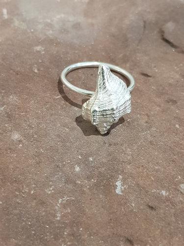 Agapi Smpokou Seastories - sea snail ring silver, size 'P'