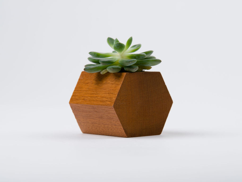 Small Planters
