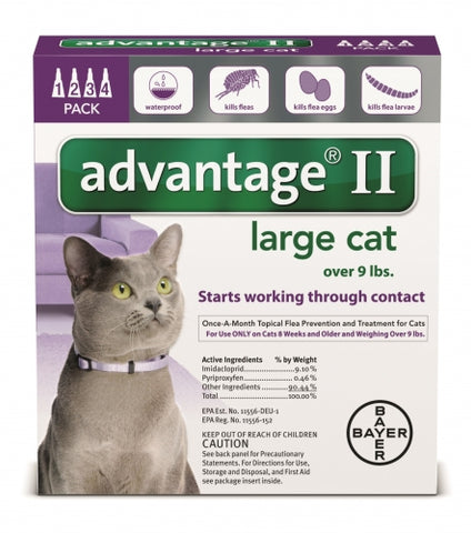 Advantage II Large Cat