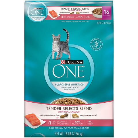 Purina ONE Tender Selects Blend with Real Salmon Dry Cat Food