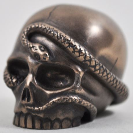 Snake Skull in Bronze Finish by Design Clinic 3.4cm