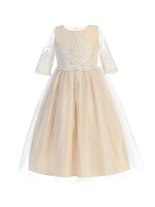 Sequin and Cord Embroidered Tulle Dress in Champagne