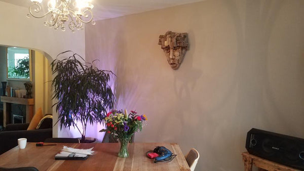 Customer photo showing the wall in his house where my painting will be hung