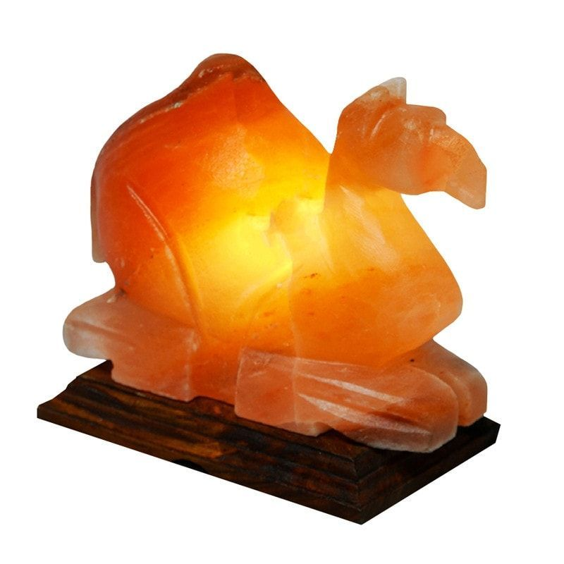 This is Beautiful Camel shape lamp