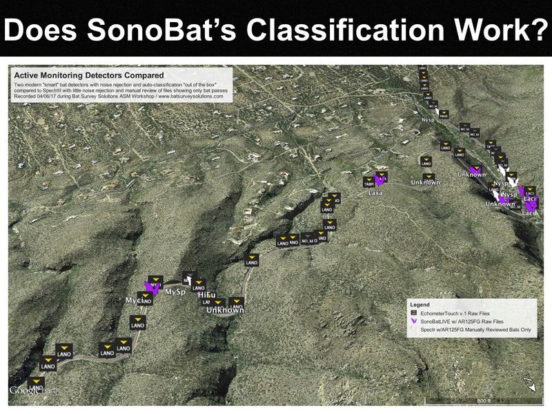 Does SonoBat's species classification work?