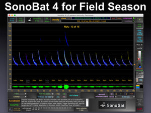 SonoBat v.4.3 - Its what you need for next Field Season!