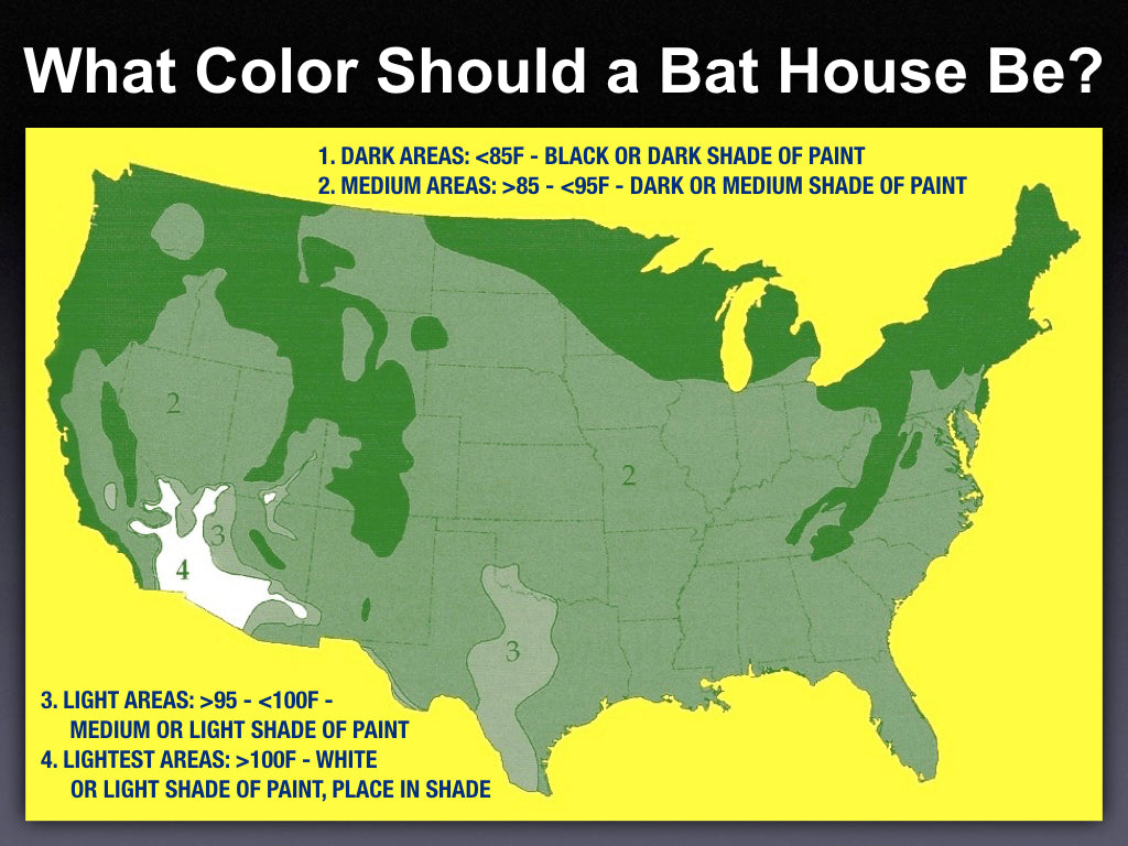 What Color Should I Paint My Bat House?