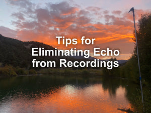 Controlling Echo: The Scourge of Bat Acoustic Recording